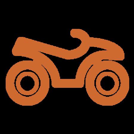Bild för kategori Elektriska fordon